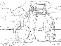 Small Picture Riding Indian Elephant coloring page Free Printable Coloring Pages