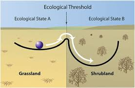 Image result for ecological threshold ball figure