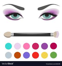 eyeshadow palette eye makeup vector image