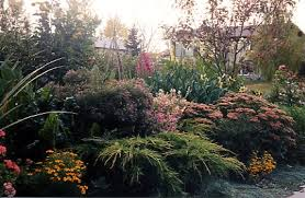 Small Picture Paintbrush Garden Design and Consulting A Combination Border