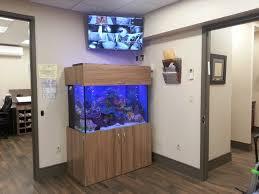 Office fish tank aquarium