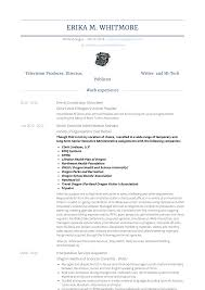 Executive Administrative Assistant Resume Samples And