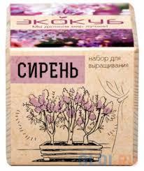 """Набор для выращивания <b>ЭКОКУБ</b> """"<b>Сирень</b>"""" <b>ECB</b>-<b>01</b>-<b>06</b> — купить ..."""