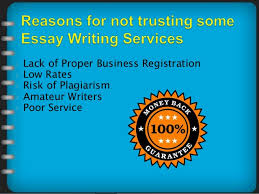 essay writing services recommendations  writers  poor service 9