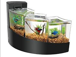small screenshot 1 office fish. aqueon kit betta falls small fish screenshot 1 office e