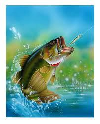 largemouth bass art