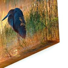 blue heron wall art heron wall art heron with sunrise over misty river national park south blue heron wall art