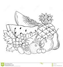 beautiful fruits in the form of a sketch more similar stock ilrations vector still life