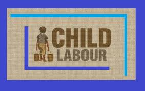 kelley child labor speech essay florence kelley child labor speech essay