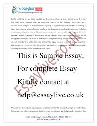 essay ideas diversity essay ideas