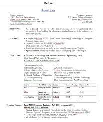 Internship Resume Sample India Sample Customer Service Resume Google Resume  Exles Getessay Biz