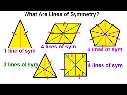 Geometry Basic Terminology 19 Of 34 Find The Error What Are Lines Of Symmetry