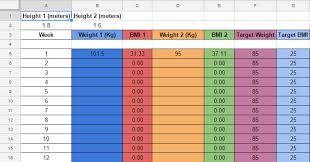 Weight Loss Progress Bmi Calculator Spreadsheet With Chart