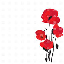 Image result for poppy illustration free