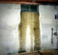 window well drainage. Basement Leak From Window Well Drainage G