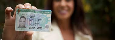 Resultado de imagem para green card