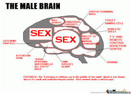 The Male Brain by pikachustahp - Meme Center via Relatably.com