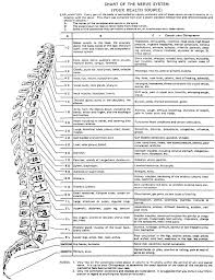 Meric Chart Nerve Chart Connect Chiropractic