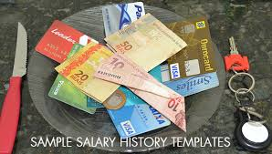 9 Sample Salary History Templates Free Word Pdf