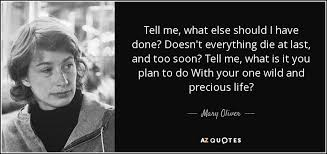 Mary Oliver quote: Tell me, what else should I have done? Doesn't ...