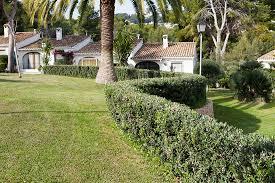 Garden Design Companies