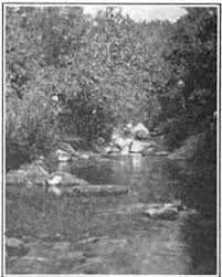 Laurel Run