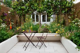 Courtyard Plants Design Brook Green Courtyard Joanna Archer Garden Design