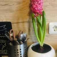<b>Сушилка для столовых приборов</b> IKEA Орднинг (нержавеющая ...