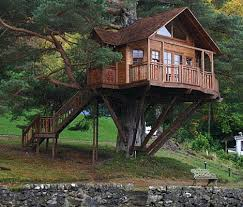basic tree house pictures. Sweet-Looking 10 Basic Tree House Plans 2 Designs. « Pictures