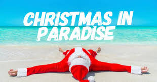 Image result for christmas paradise