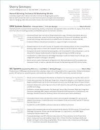 Definition Of Resume New Definition For Resume Transvente Com