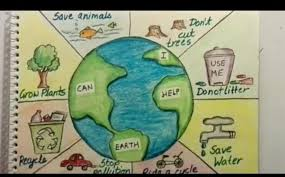 Chart On Send Me Chart On Save Environment Brainly In