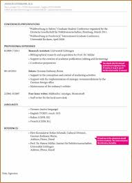 Funky Meaning Resume Job Application Inspiration Entry Level