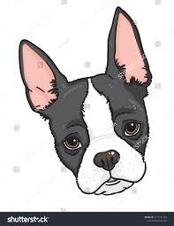 Cartoon Face Boston Terrier Dog Vector ...