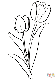 Small Picture Two Tulips coloring page Free Printable Coloring Pages