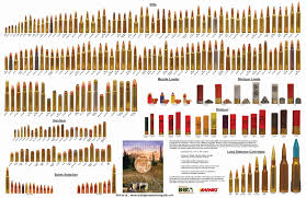 22 Symbolic Rifle Calibers By Size Chart