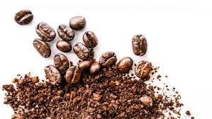 Hawaiian drip coffee is a new classic hawaiian souvenir! How Much Would You Pay For A Cup Of Kope Coffee Tradevistas