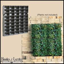 DIY Living Walls Click to enlarge