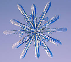 Snowflake Bullet Point February 13 Weatherblog Everything You Always Wanted To Know About