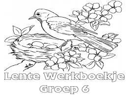 Lente Werkboekje Groep 6 Werkboekjes Printen Op Minipretnl
