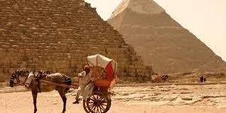 نتيجة بحث الصور عن trips horse in Egypt