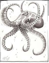 Small Picture 88 best Octopus InkArt Etc images on Pinterest Octopuses