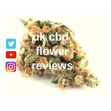 Image result for cbd flower uk images