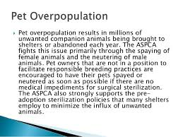 aspca stance on pet overpopulation 3  pet overpopulation