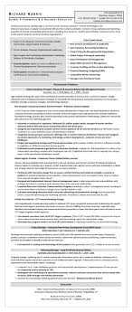 Ecommerce Resume Sample Résumé Global ECommerce EBusiness Executive Executive 1