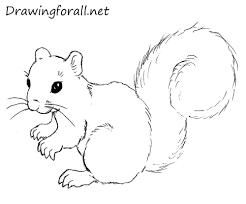 Squirrel Coloring Pages Cartoon Squirrel Coloring Pages Squirrel