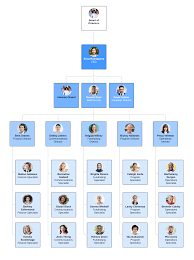 A Typical Organization Chart Showing Delegation Of Authority Would Show 7 Types Of Organizational Structures Lucidchart Blog