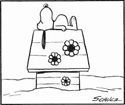 スヌーピー全集 全10巻 10巻収納box付きチャールズmシュルツ