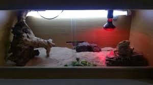 3 foot vivoxotic vivarium full set up heat lamp thermostat uv light