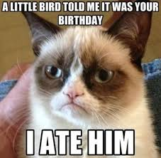 grumpy cat birthday quotes. Fine Birthday Grumpy Catu0027s Birthday Wishes A Little Bird Told Me It Was Your Birthday I  Ate Him Intended Cat Quotes U